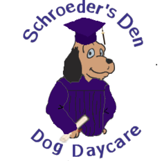 Schroeder S Den Dog Daycare